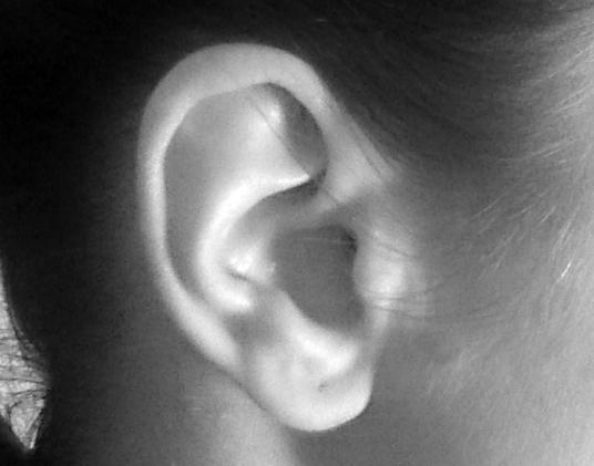 Ear_korv