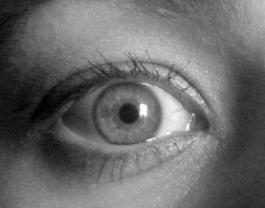 Eye_silm
